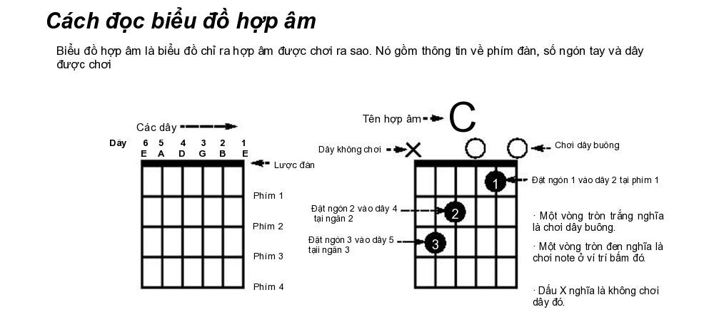hop-am-guitar-co-ban-1000x452