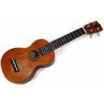 Học chơi đàn guitar ukulele có khó không?