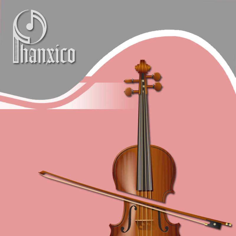 Khóa học đàn violon dành cho mọi lứa tuổi