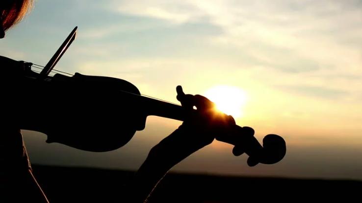 Tìm hiểu về cấu tạo đàn violin gồm những bộ phận nào?