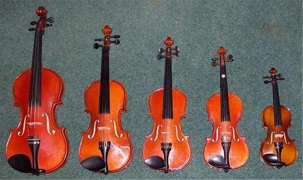 Điểm danh những cây đàn violin giá 4 triệu đồng