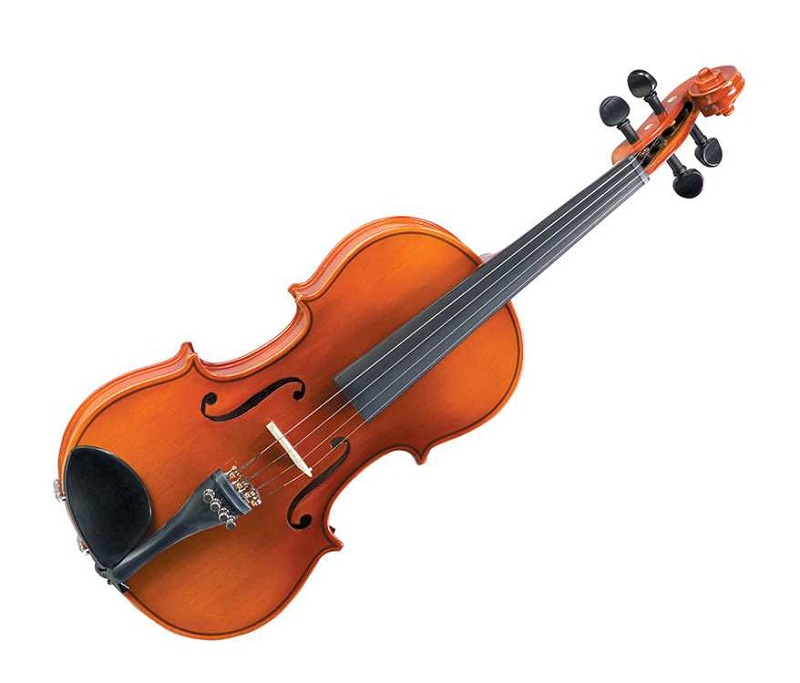 Những  cây đàn violin tốt nhất dành cho sinh viên