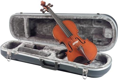 Trọn bộ đàn Violin gồm những gì?