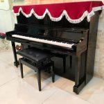 PHANXICO chuyên đào tạo âm nhạc và cung cấp các loại nhạc cụ.